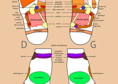 Berangere-reflexologie-frangy-Planche-Pieds